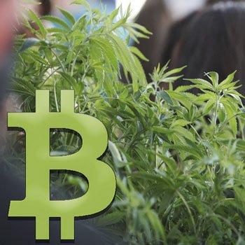 Is de Amerikaanse legalisatie van Cannabis een kans voor Bitcoin?
