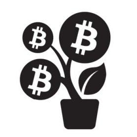 Terwijl de koers stagneert, groeit Bitcoin gewoon keihard door.
